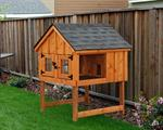 Keep your rabbit in a hutch with an enclosed area ...